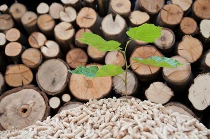Il pellet, una scelta sostenibile